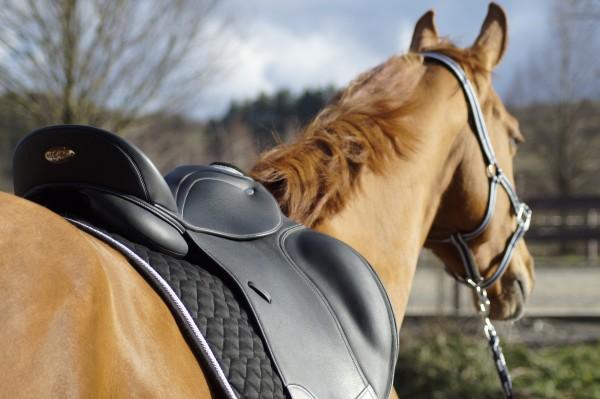 Pferde-Sättel und -Zubehör