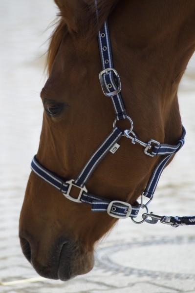 Pferdezubehör Zügel & Gebisse