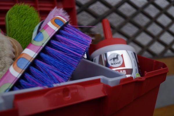 Striegel, Bürsten und Pferdepflegeprodukte zum Putzen