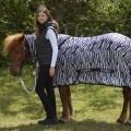 RugBe Zebra Fliegen- & Ekzemerdecke mit Halsteil 1