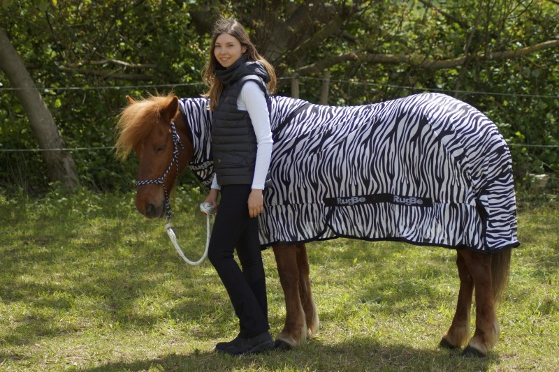 RugBe Zebra Fliegen- & Ekzemerdecke mit Halsteil 2