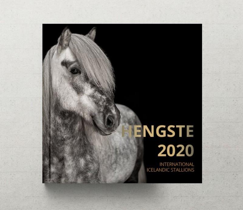HENGSTE 2020 1