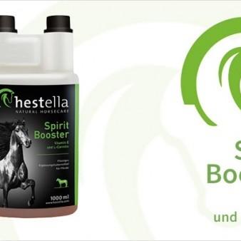 HESTELLA SPIRIT BOOSTER, Dosierflasche (Inhalt: 1000ml)