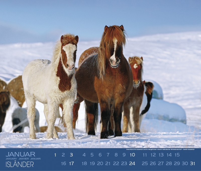 Kalender ISLÄNDER - Edition Boiselle 3